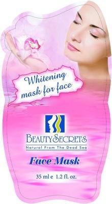 Beauty Secrets Masque facial a la Boue de la Mer Morte Avec l'extrait de Face Mask 35g