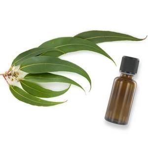 RACINE VITA Huile essentielle d'eucalyptus 10 ml