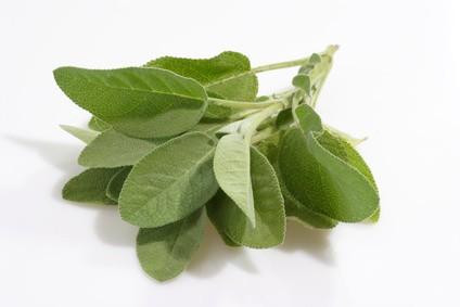 Flore et sens Huile essentielle de sauge 20 ml
