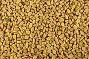 NaturEsoin Huile de Fenugrec (50 ml)