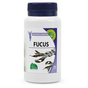 MGD NATURE FUCUS 120 GÉLULES